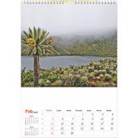 Foto 2 Calendario bella colombia b03